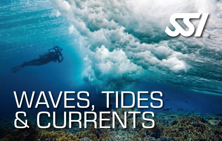 SSI Waves, Tides & Currents en Venezuela - Scuba Schools International - Arrecife Diver's